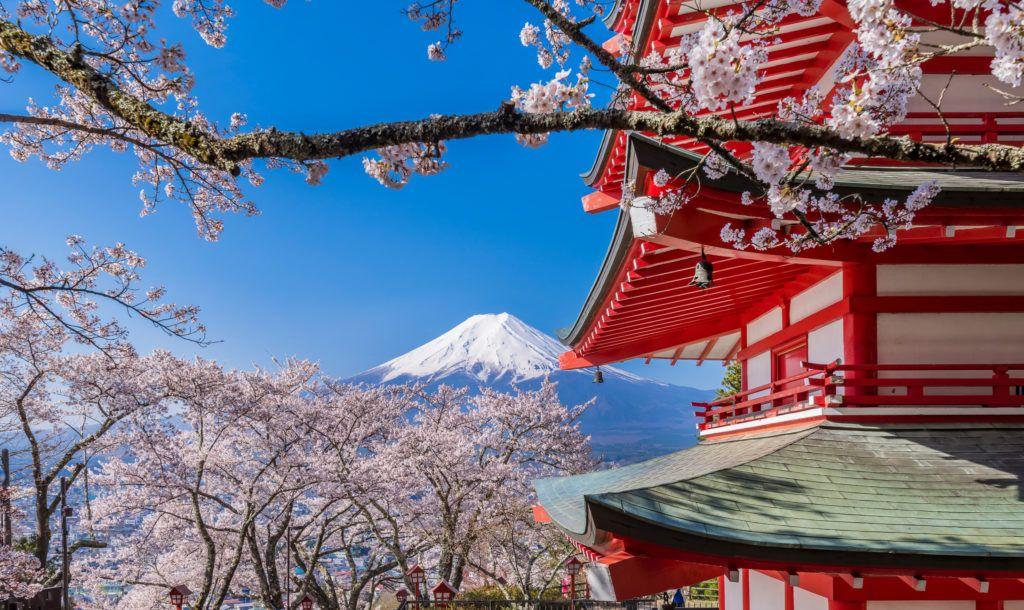 viaje fotografico japon