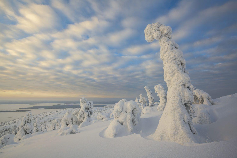 viaje fotografico peninsula de kola laponia rusa