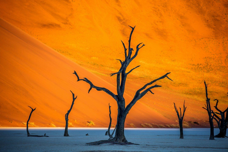 viaje fotografico namibia