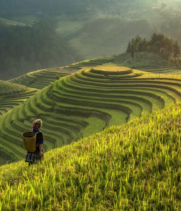 viaje fotografico Vietnam